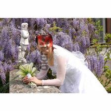 A takto to bolo krásne rozkvitnuté v Arboréte Mlyňany!
