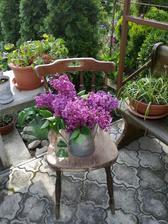 orgovan z nasej zahradky