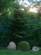 mm priniesol zopar novych skal do zahrady