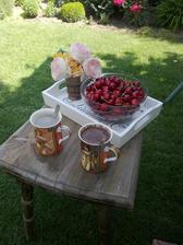 rano v zahrade