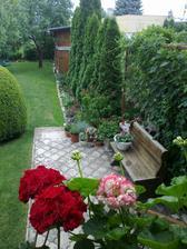 krasne rano v nasej malej zahrade