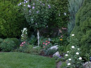 Krasne rano v zahrade
