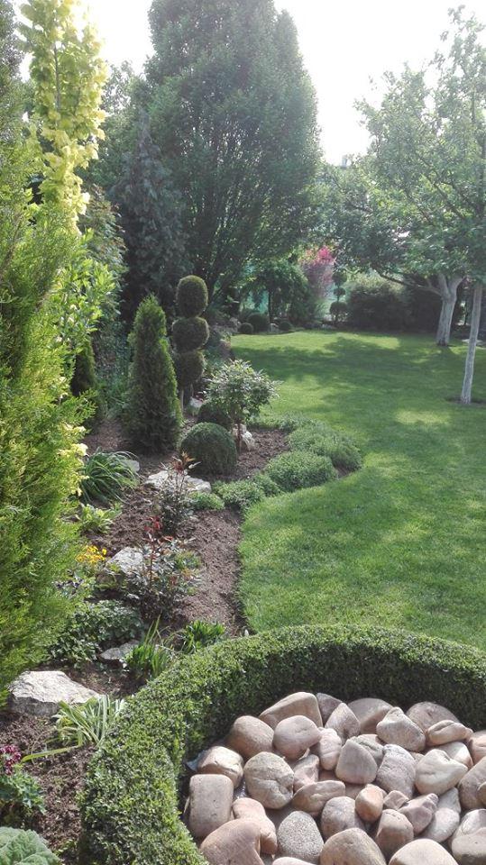 Zahrada - Obrázok č. 30