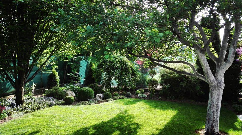 Zahrada - Obrázok č. 32
