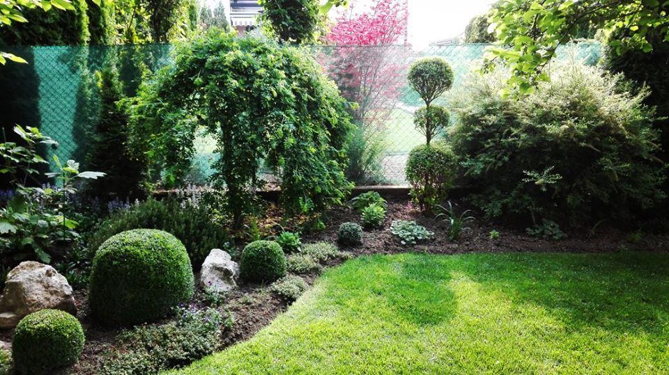 Zahrada - Obrázok č. 33