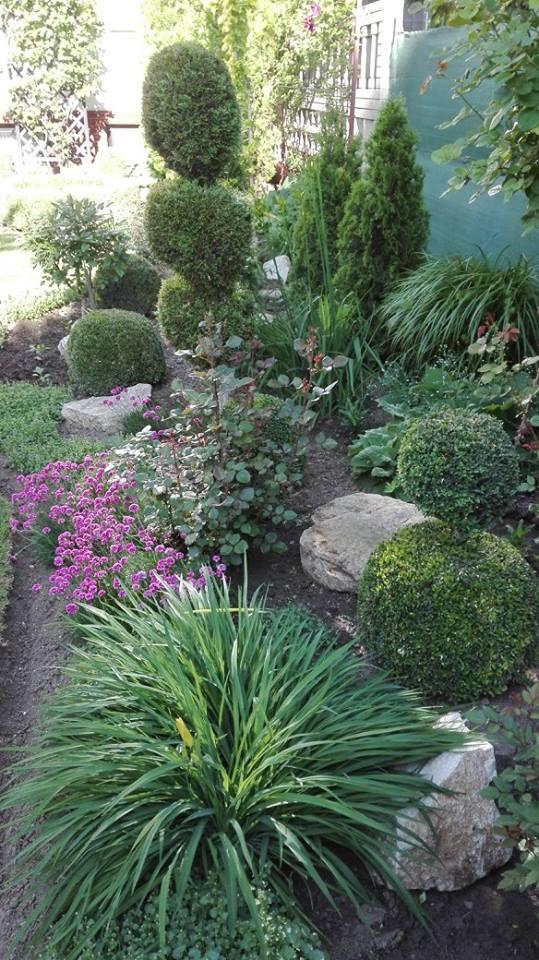 Zahrada - Obrázok č. 34