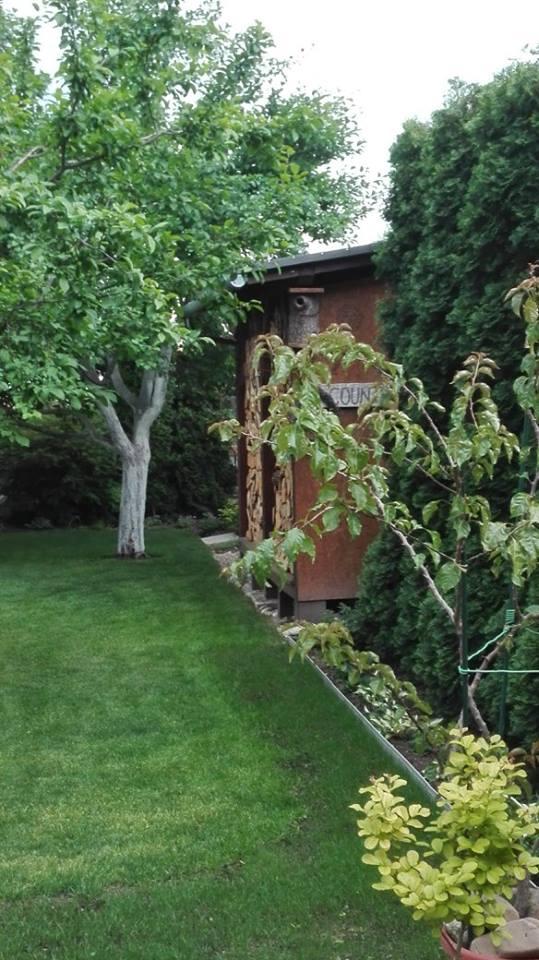 Zahrada - Obrázok č. 36