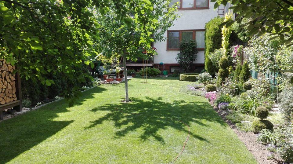 Zahrada - Obrázok č. 38