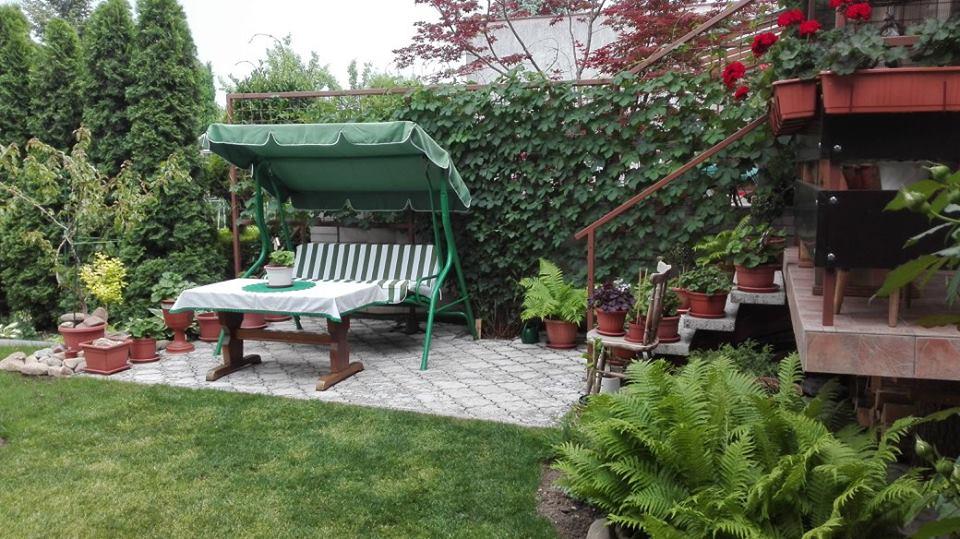Zahrada - Obrázok č. 41