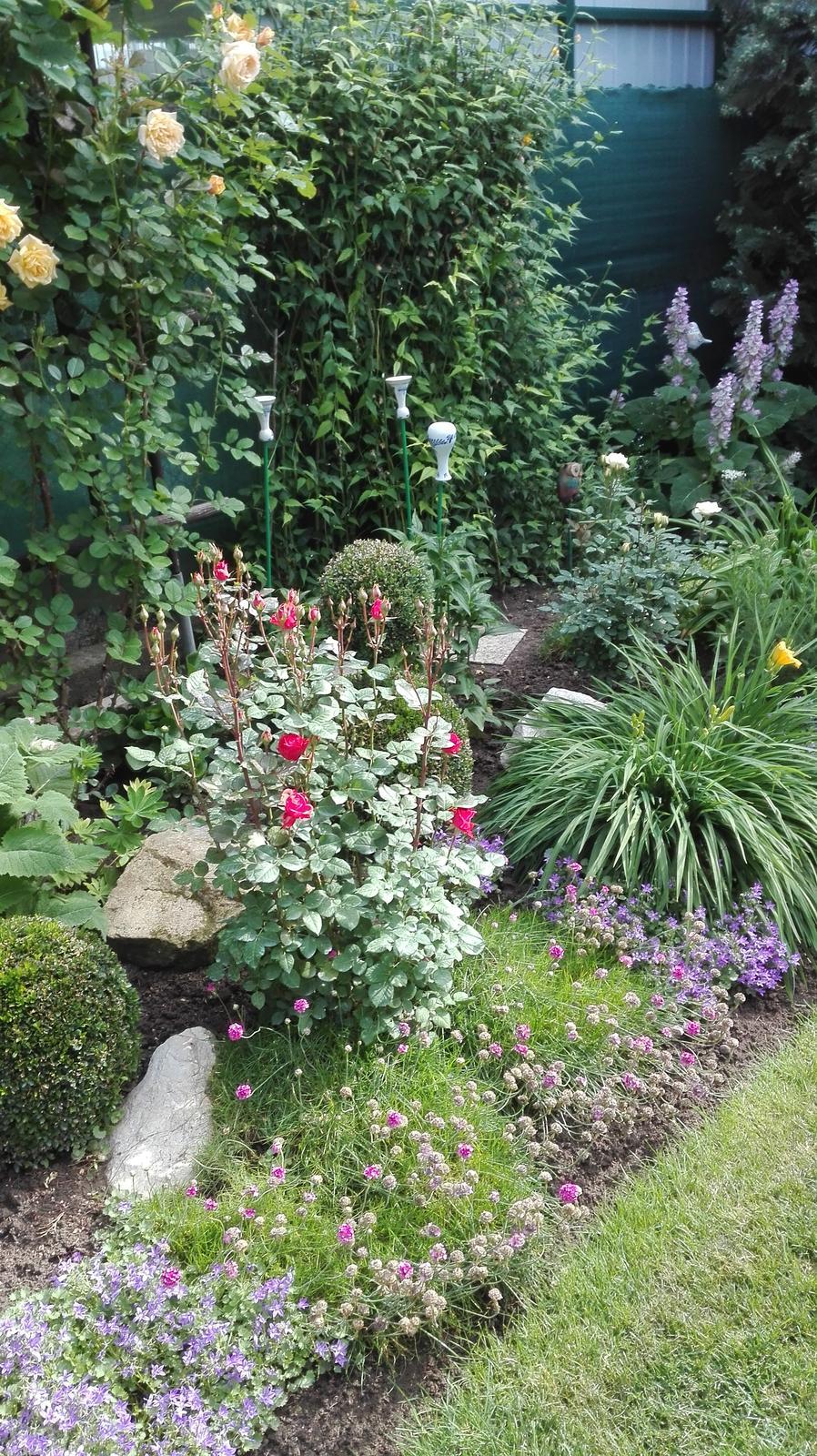 Zahrada - Obrázok č. 79