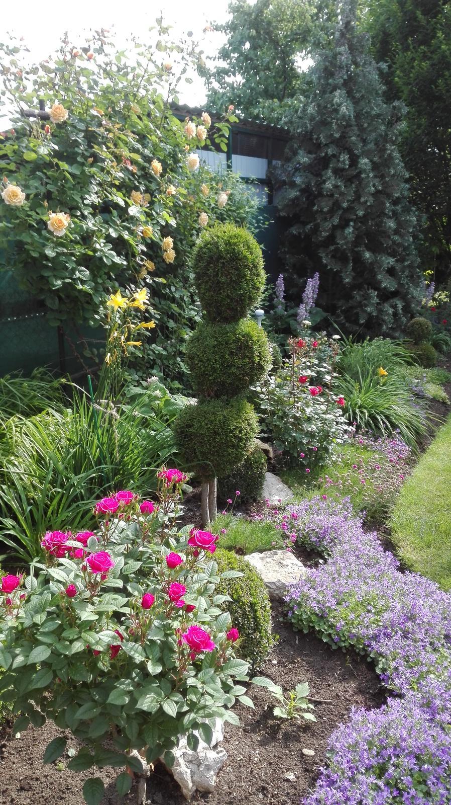 Zahrada - Obrázok č. 80