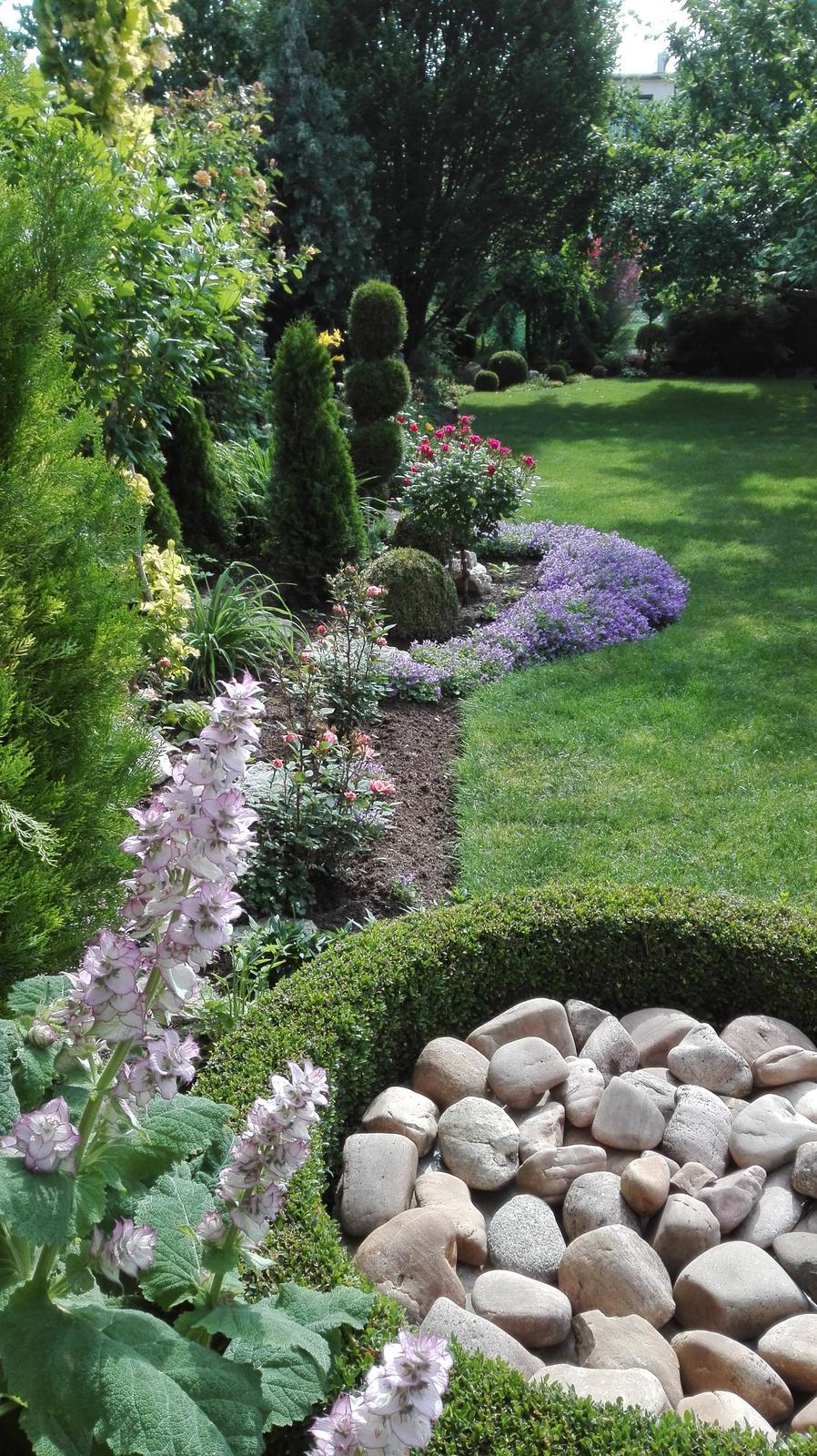 Zahrada - Obrázok č. 81