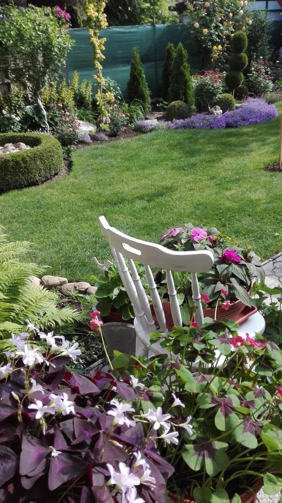 Zahrada - Obrázok č. 84