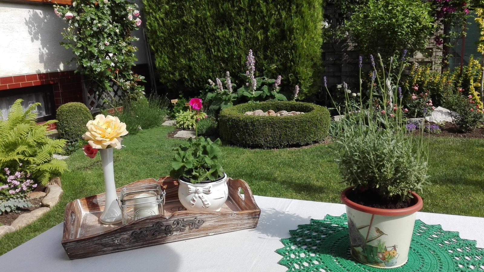 Zahrada - Obrázok č. 91