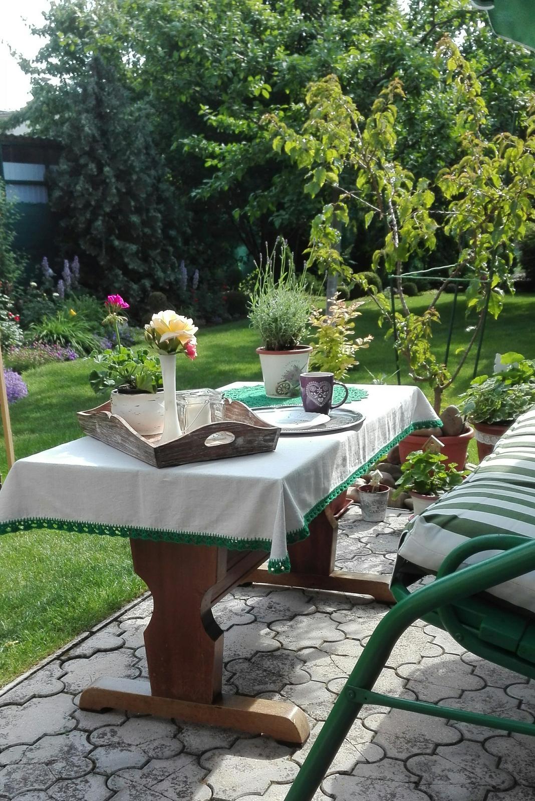 Zahrada - Obrázok č. 88