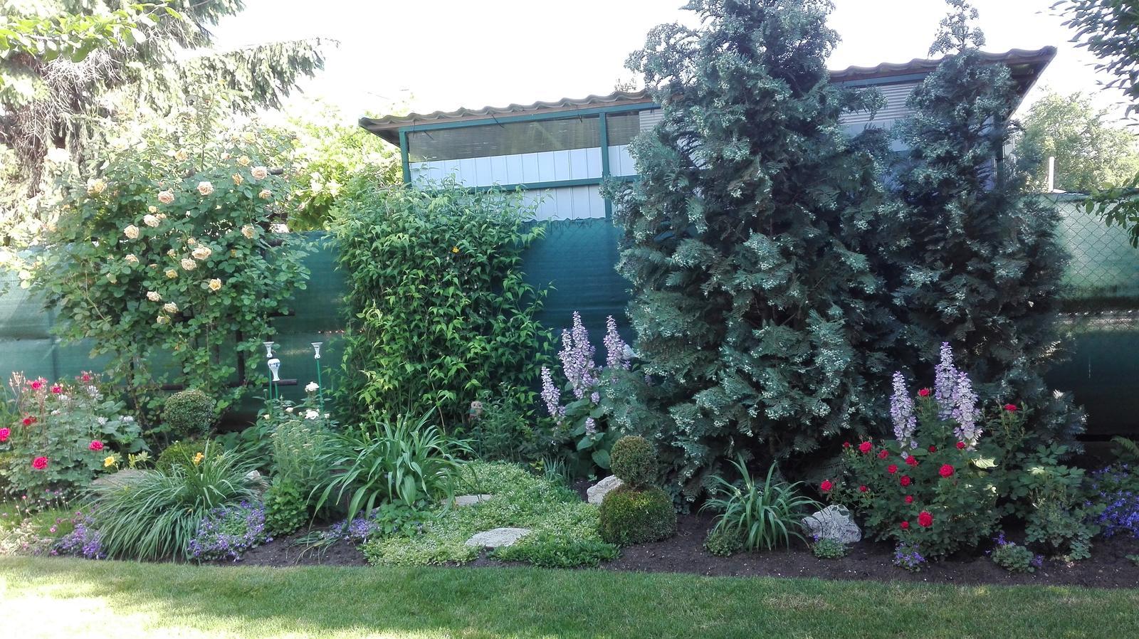 Zahrada - Obrázok č. 109