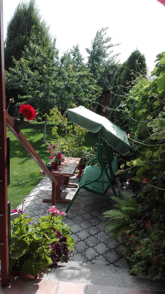 Zahrada - Obrázok č. 133