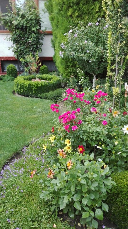 Zahrada - Obrázok č. 155