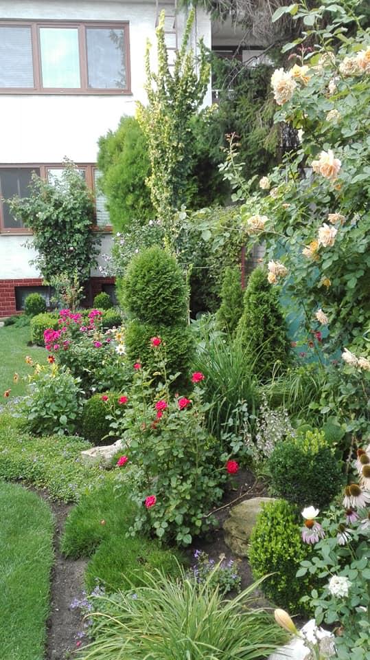 Zahrada - Obrázok č. 156