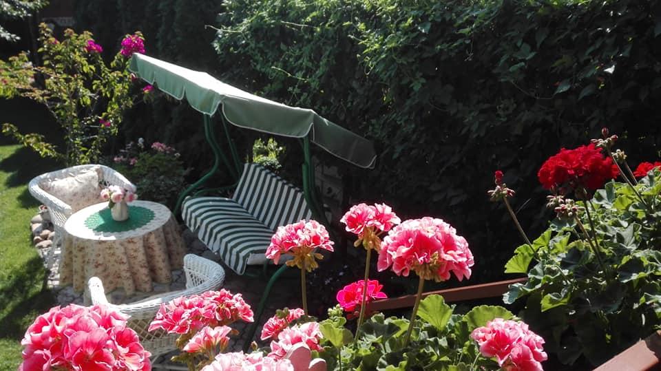 Zahrada - Obrázok č. 161