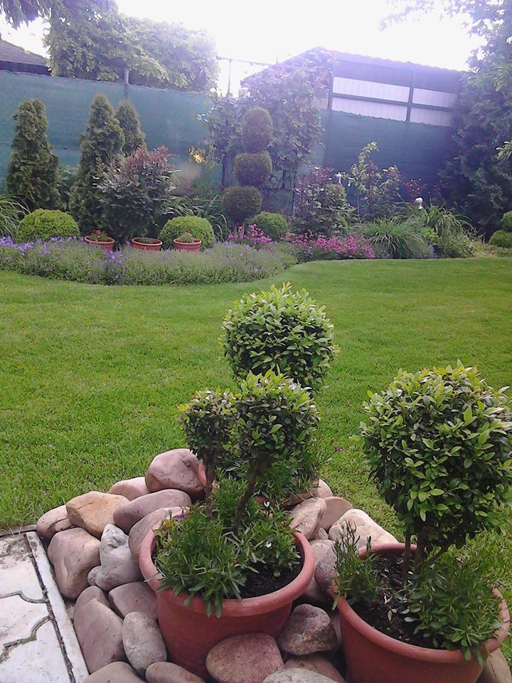 Zahrada - Obrázok č. 168