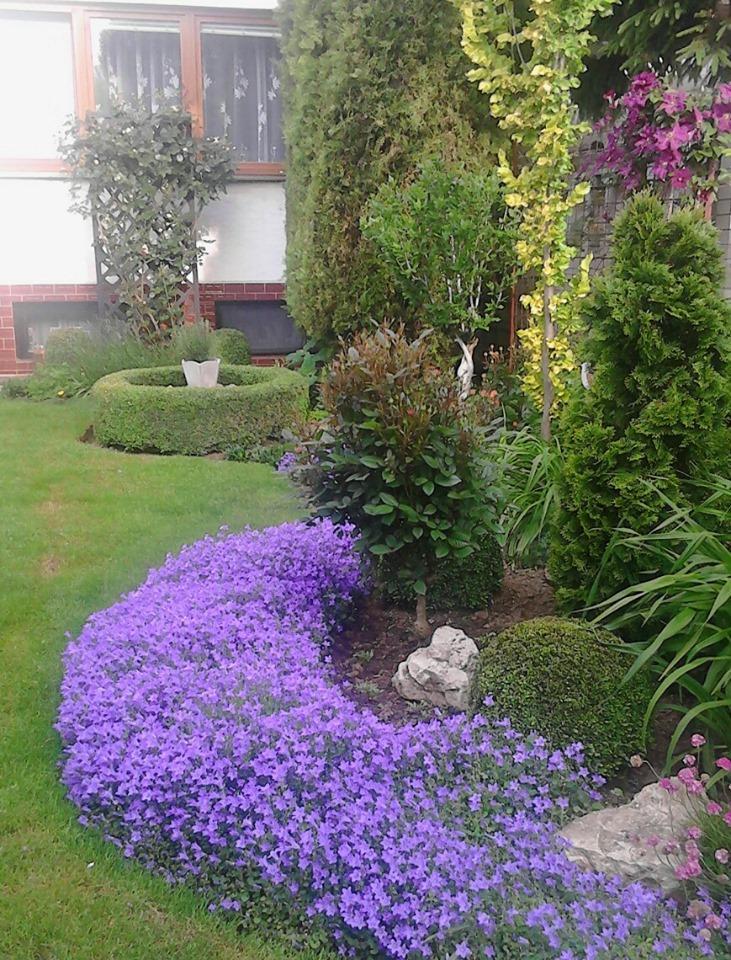 Zahrada - Obrázok č. 177