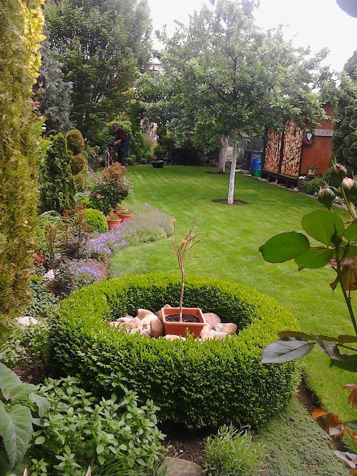 Zahrada - Obrázok č. 189