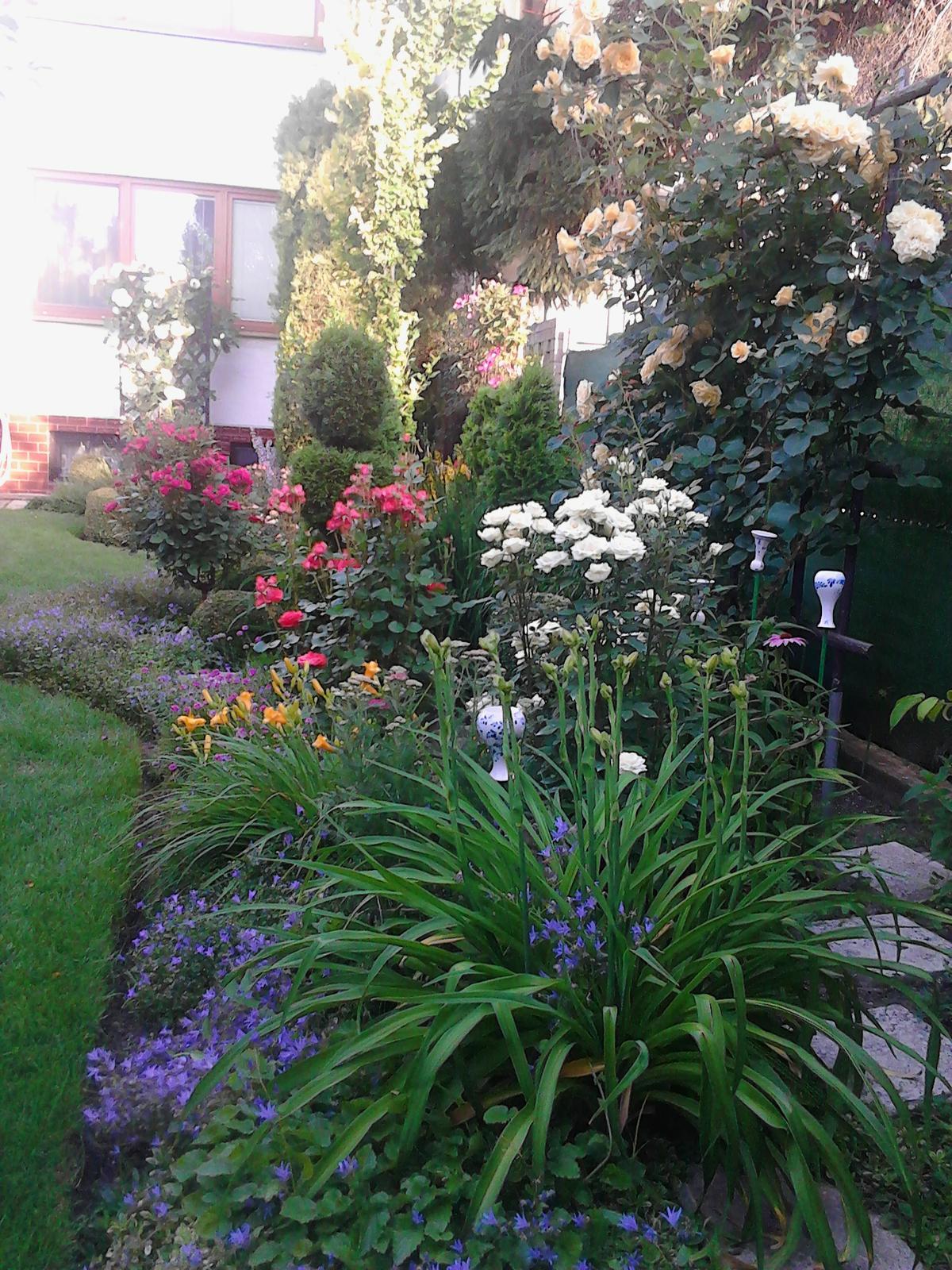 Zahrada - Obrázok č. 206