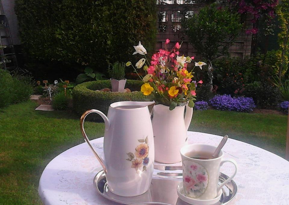 Moje male radosti - Ranny cajik v zahrade