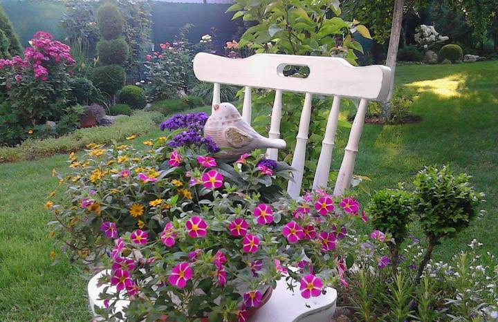 Moje male radosti - Nieco so zahrady