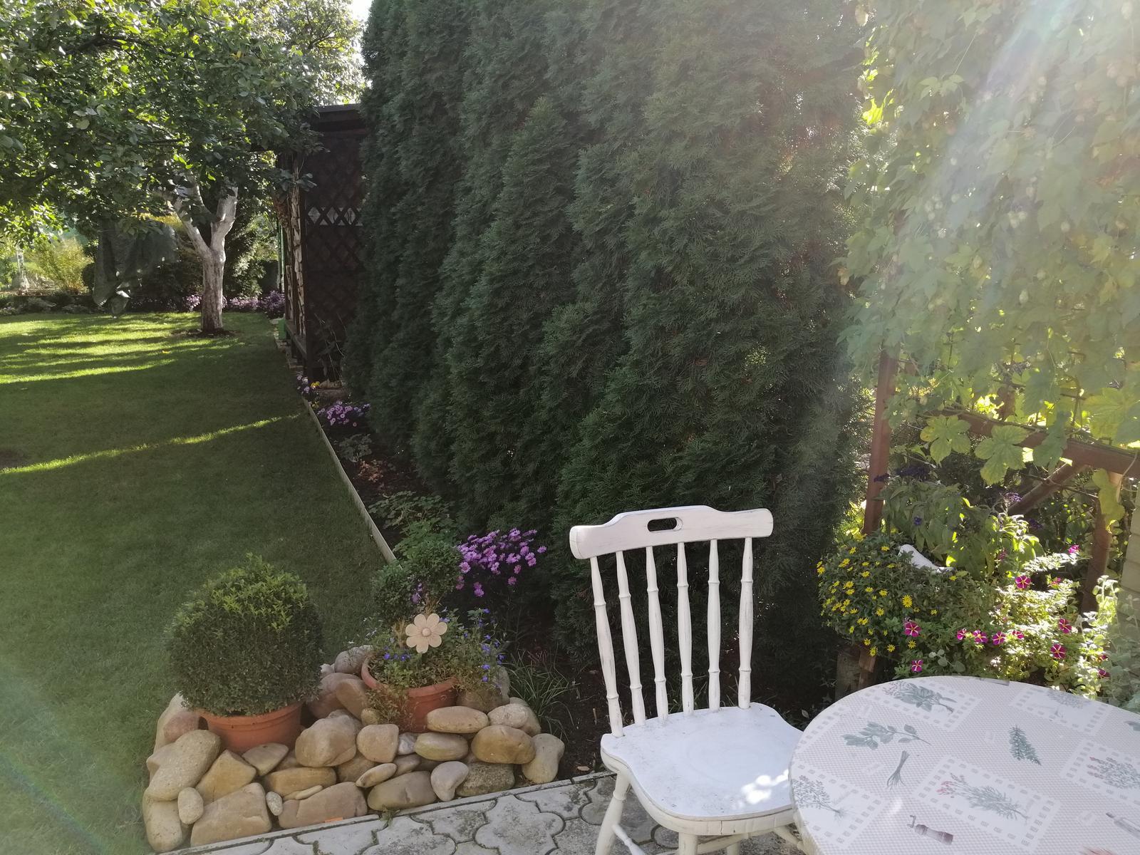Zahrada - Obrázok č. 319