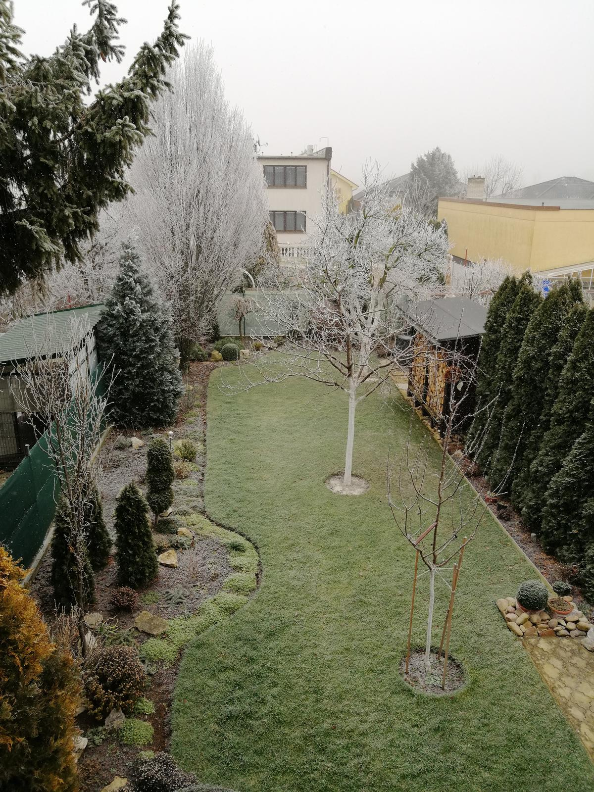 Zahrada - Obrázok č. 344