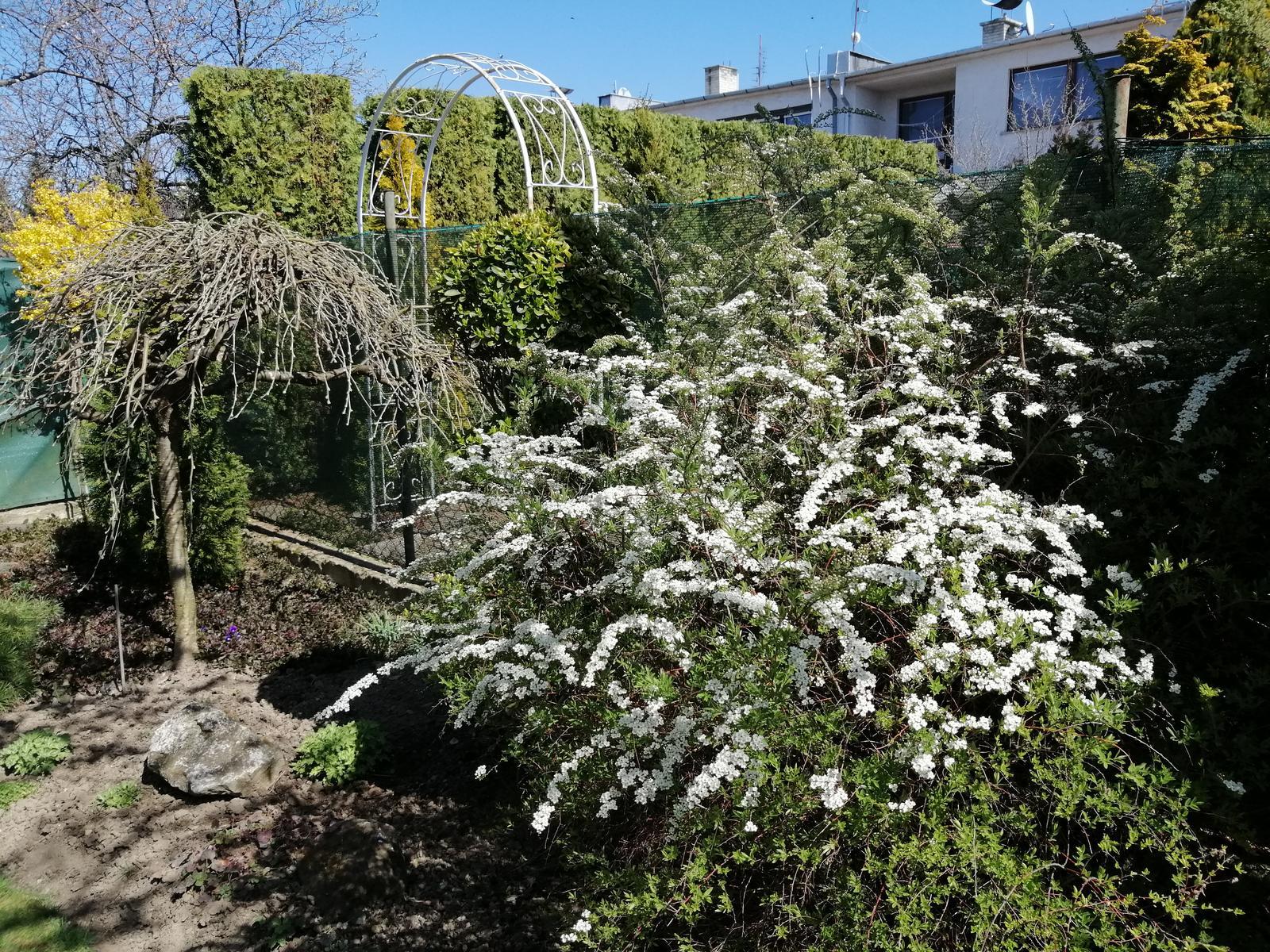 Zahrada - Obrázok č. 371