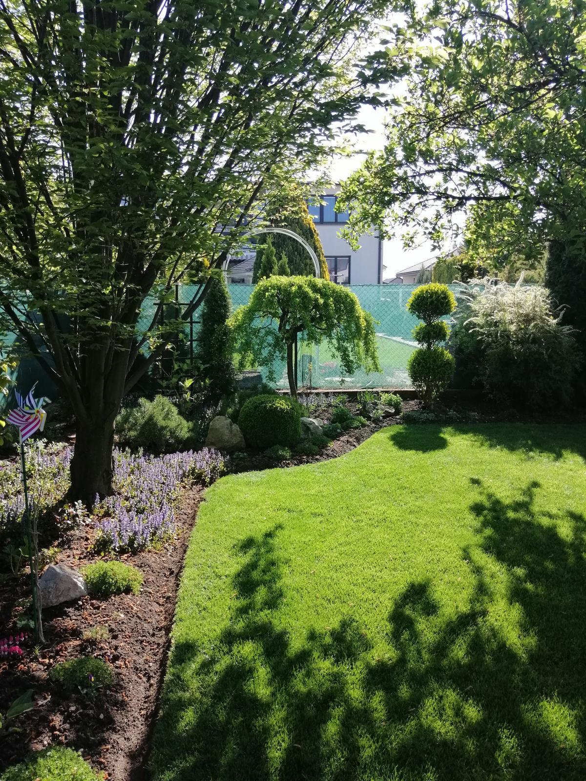 Zahrada 2020 - Obrázok č. 2