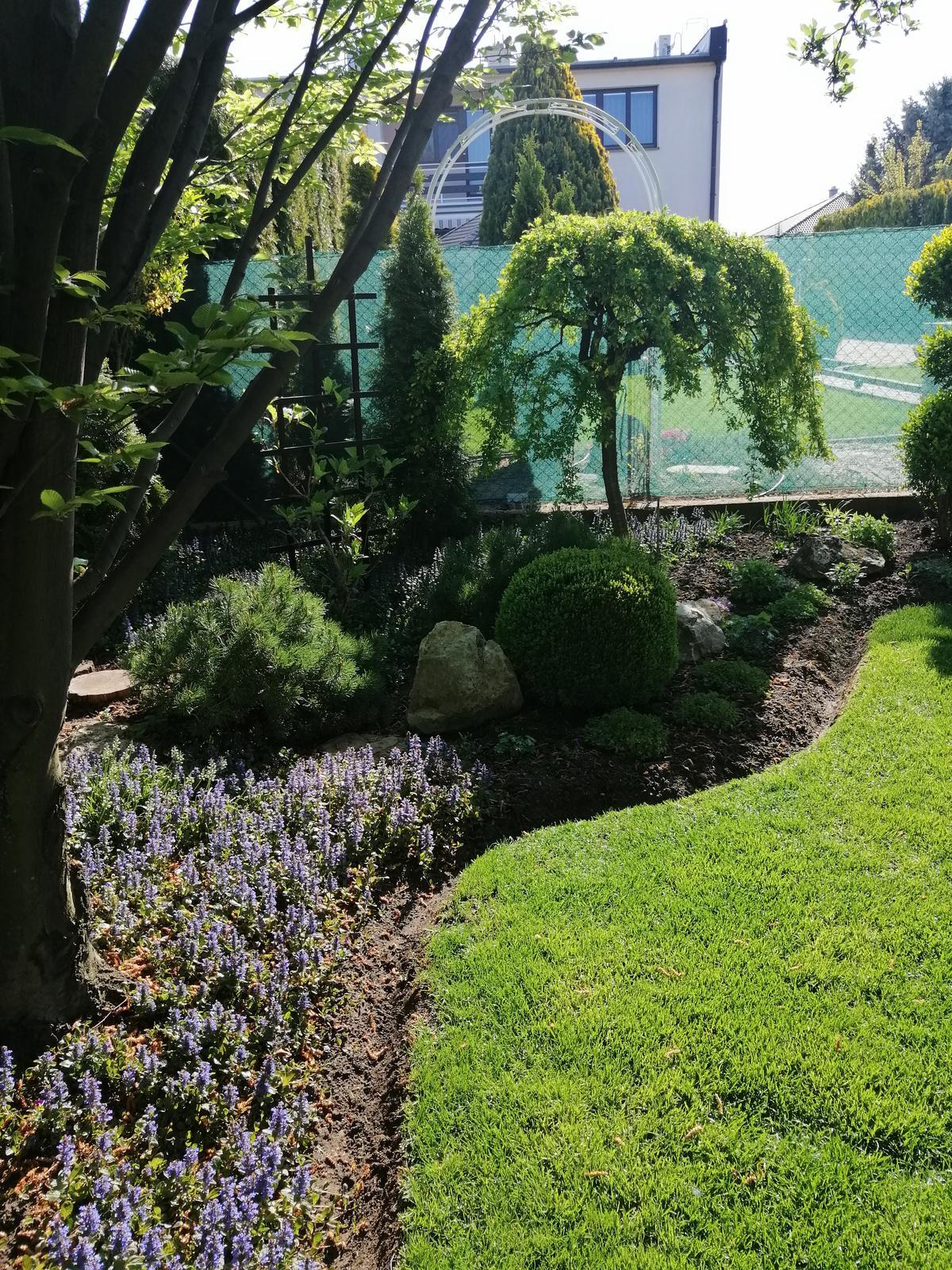 Zahrada 2020 - Obrázok č. 3