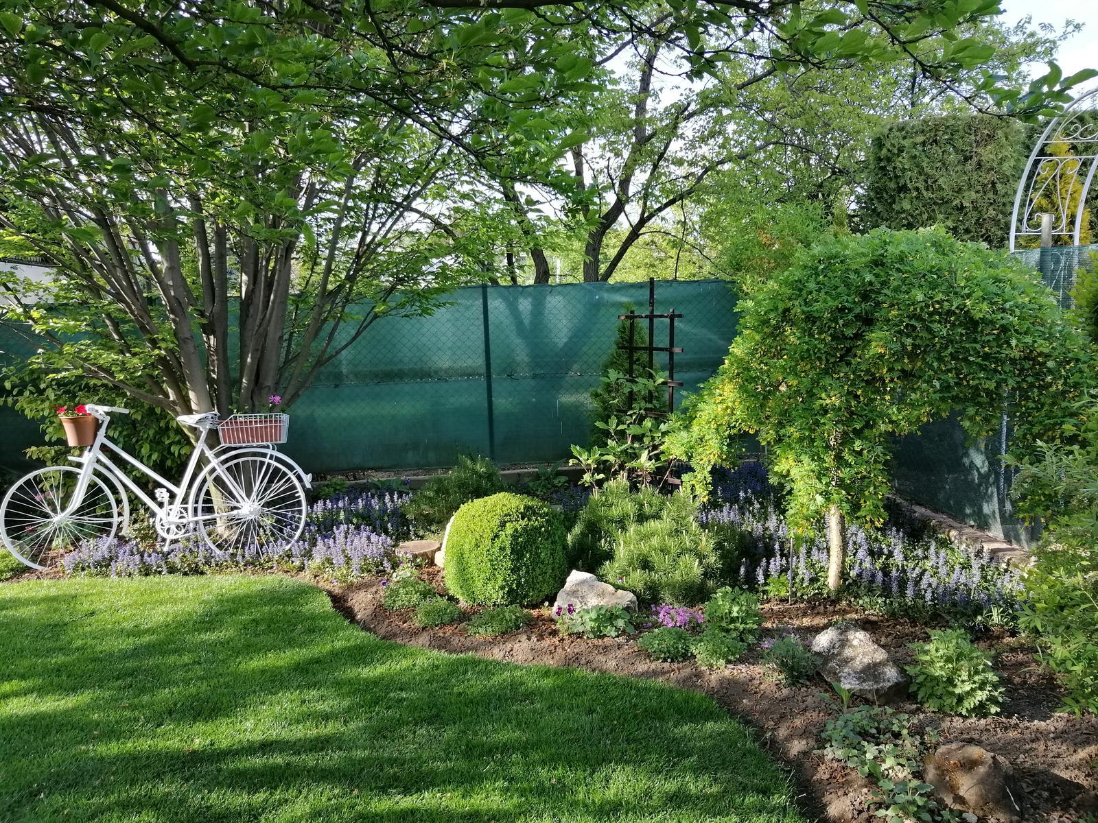 Zahrada 2020 - Obrázok č. 23
