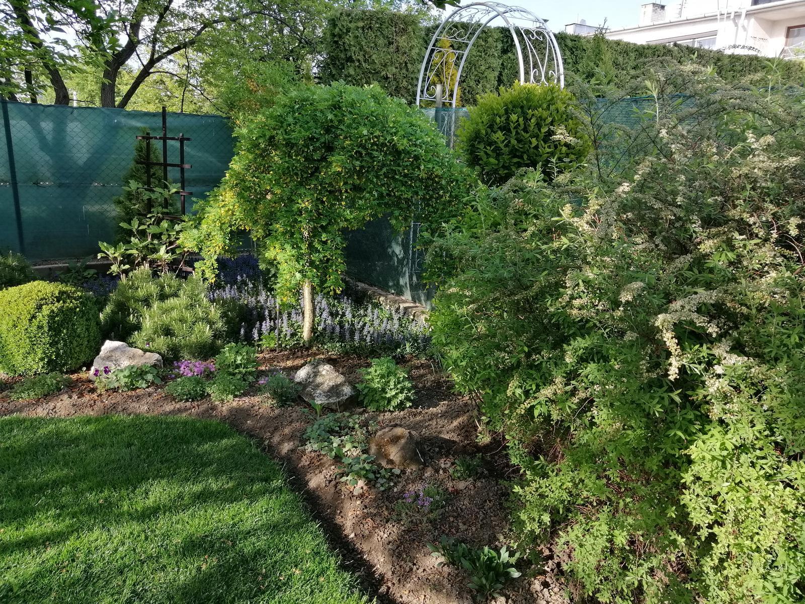 Zahrada 2020 - Obrázok č. 24