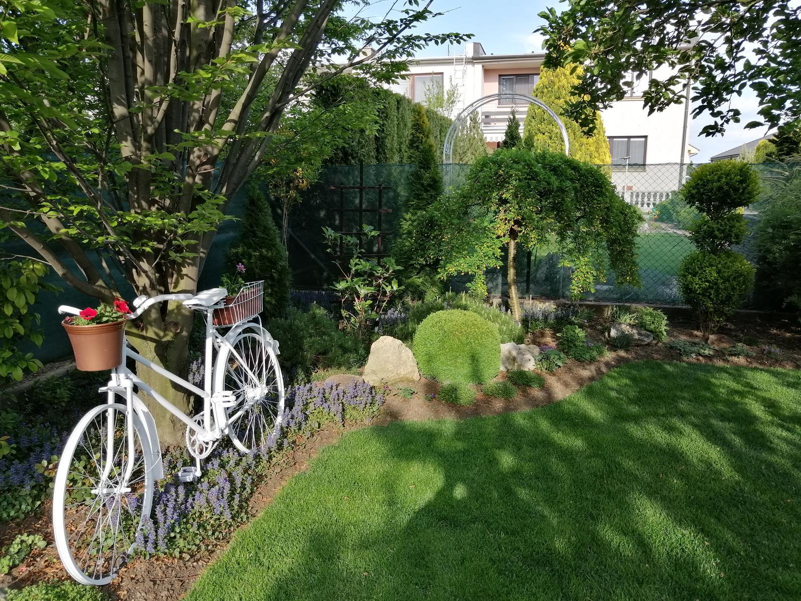 Zahrada 2020 - Obrázok č. 25