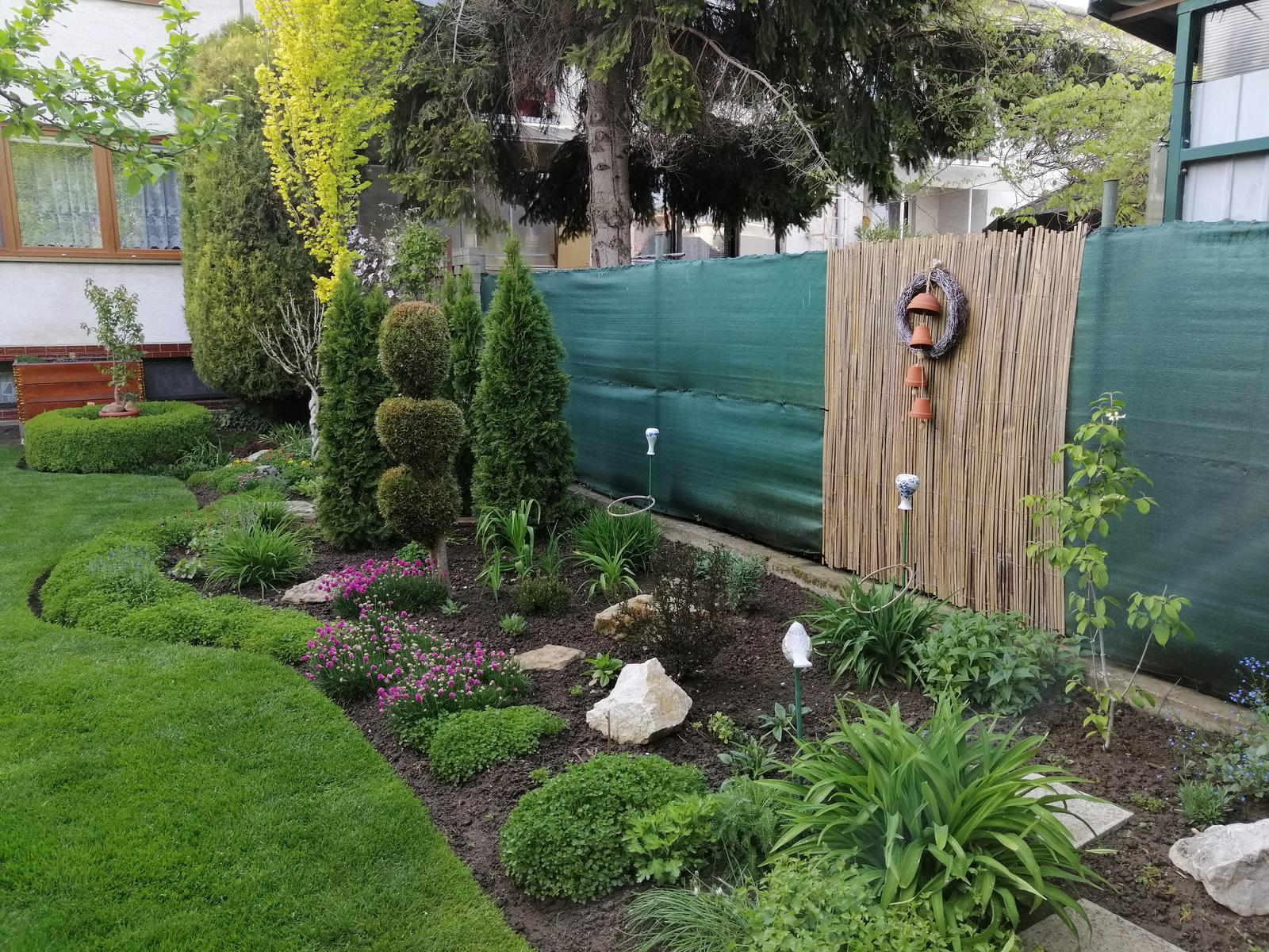Zahrada 2020 - Obrázok č. 33