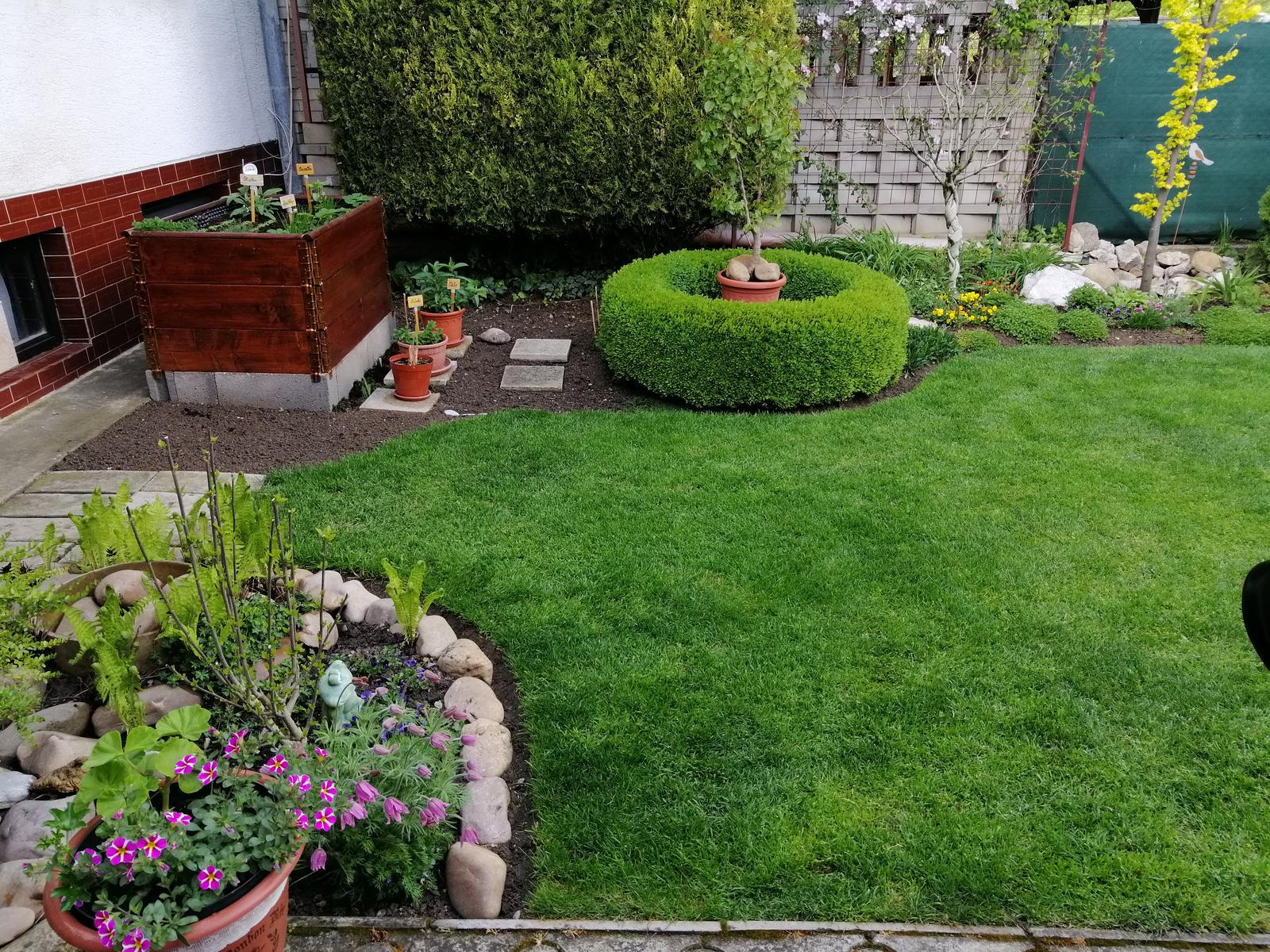 Zahrada 2020 - Obrázok č. 38