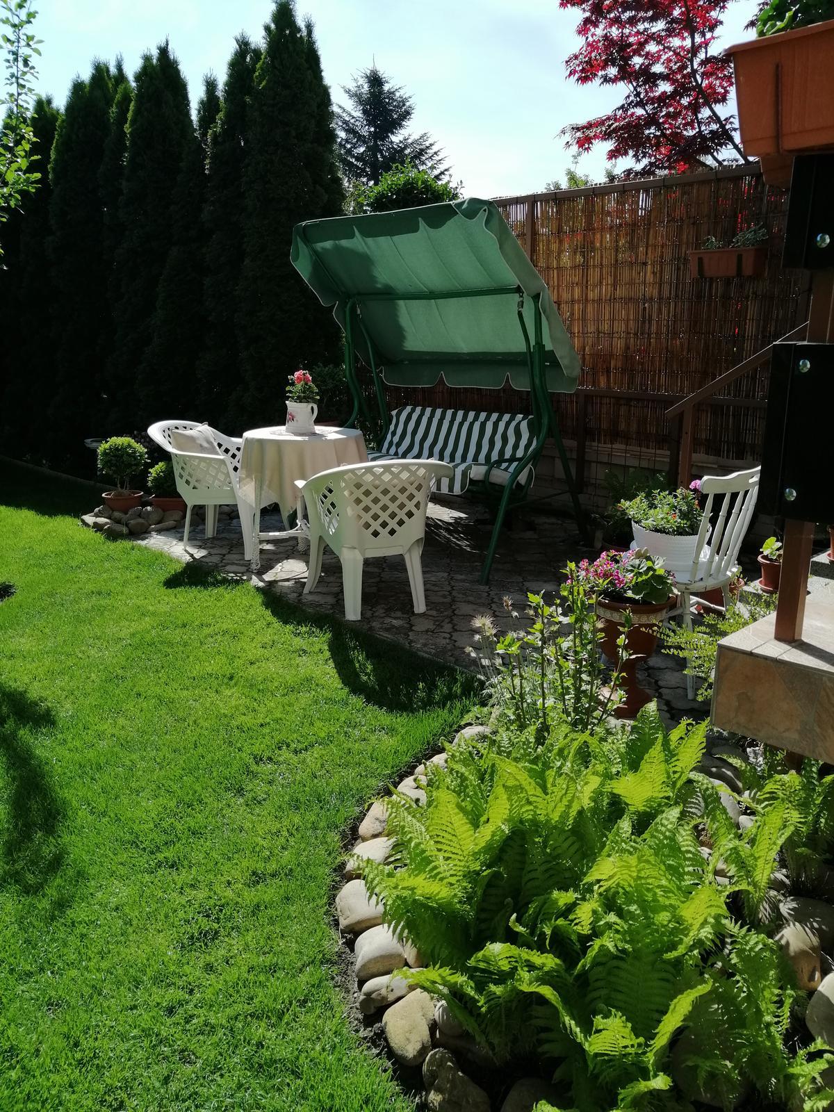 Zahrada 2020 - Obrázok č. 65
