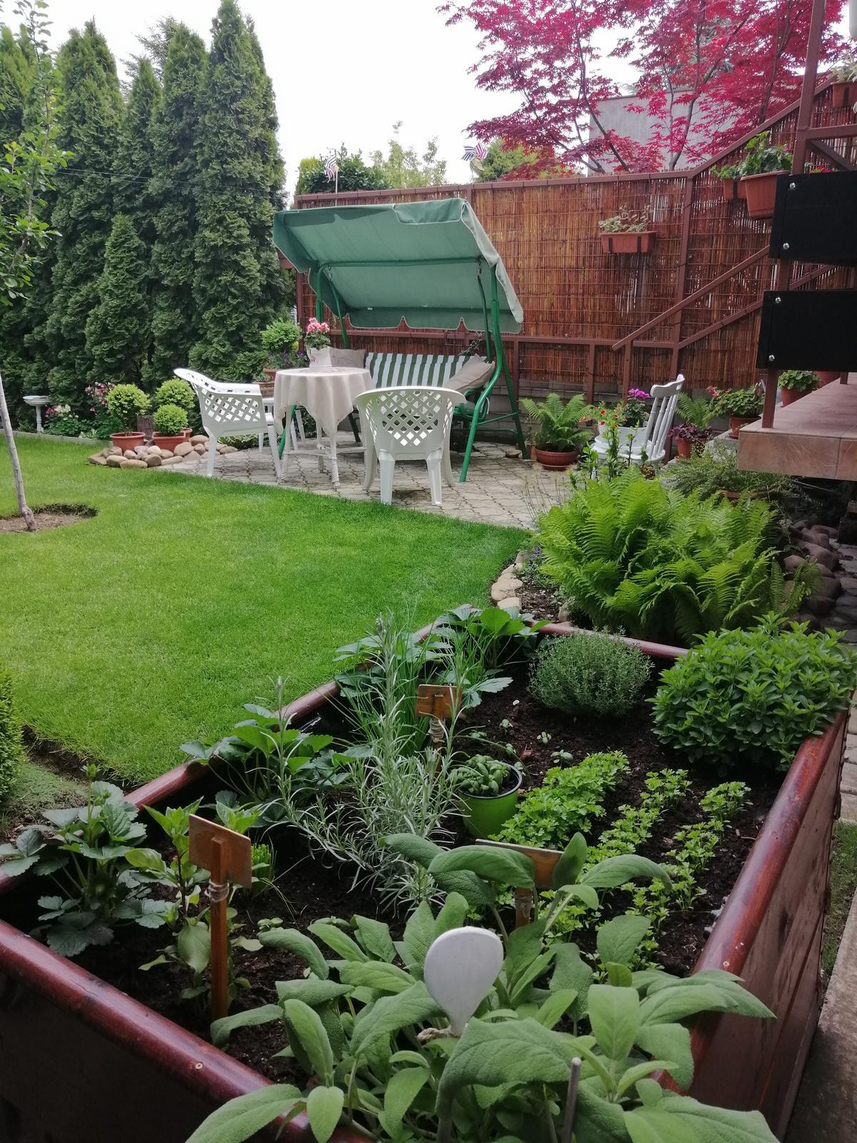 Zahrada 2020 - Obrázok č. 68