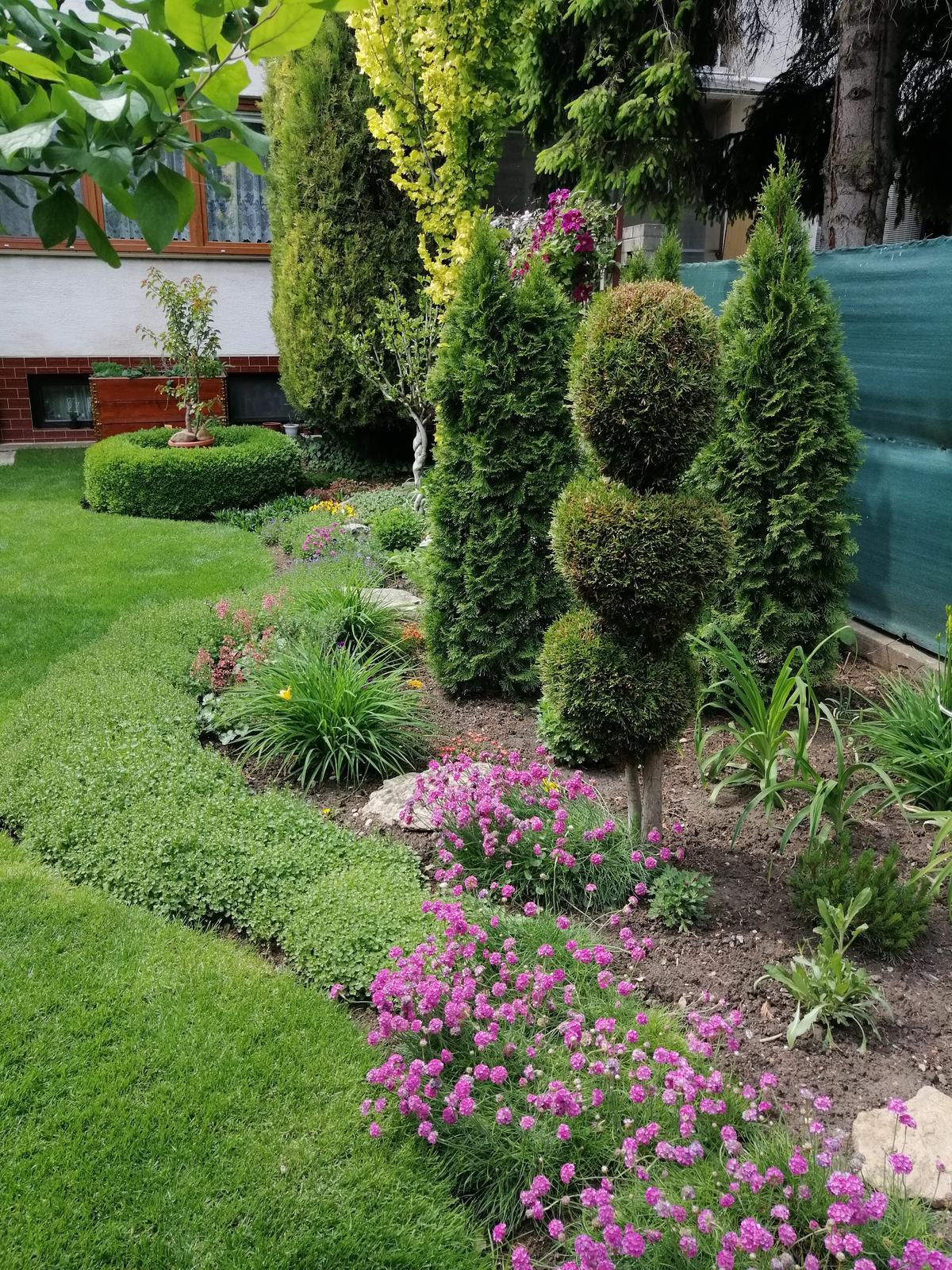 Zahrada 2020 - Obrázok č. 70