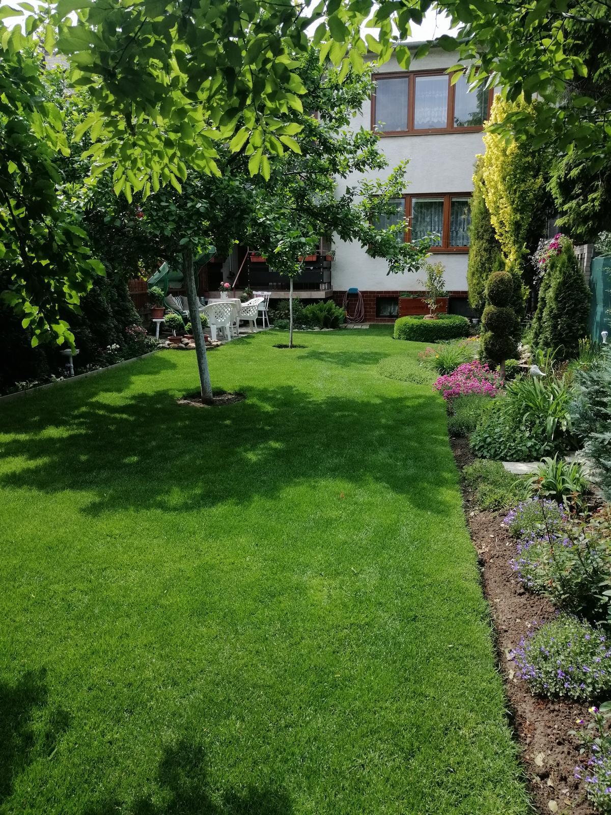 Zahrada 2020 - Obrázok č. 71