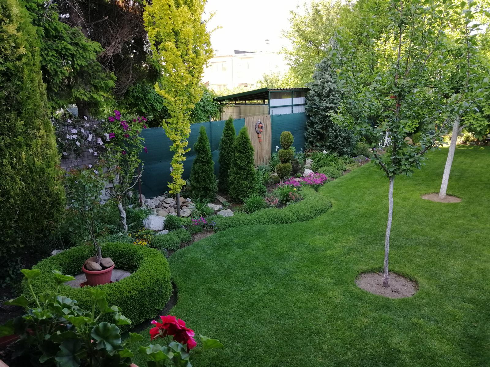 Zahrada 2020 - Obrázok č. 75