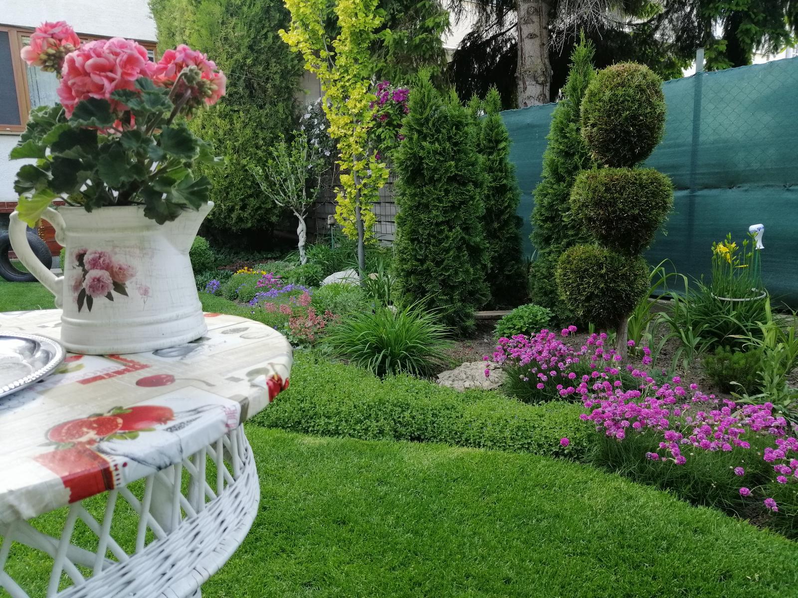 Zahrada 2020 - Obrázok č. 93
