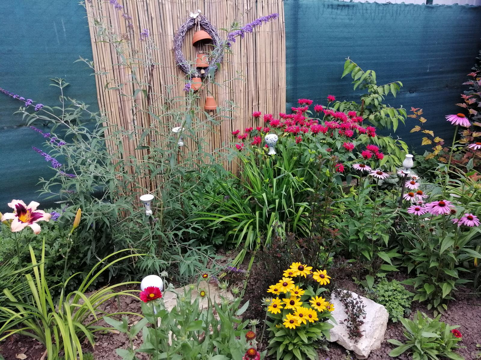 Zahrada 2020 - Obrázok č. 200