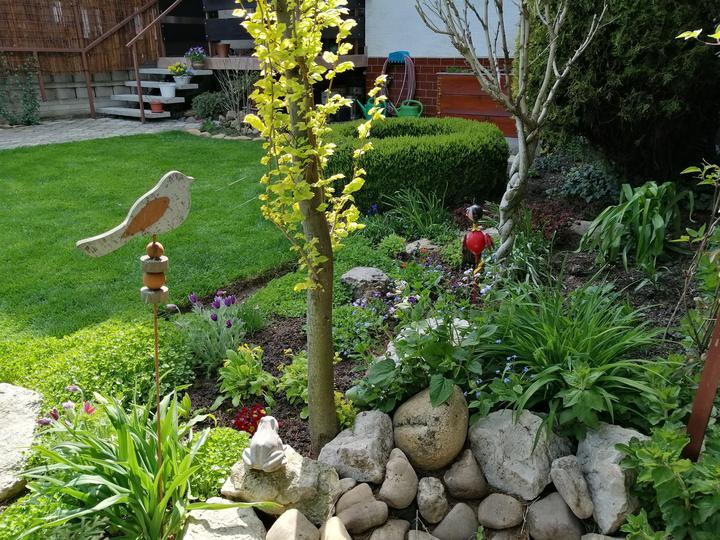 Záhrada 2021 - Obrázok č. 24
