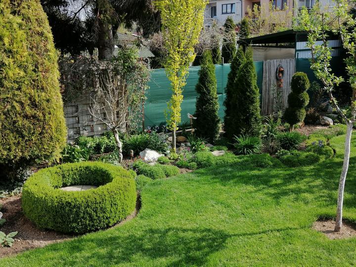 Záhrada 2021 - Obrázok č. 25