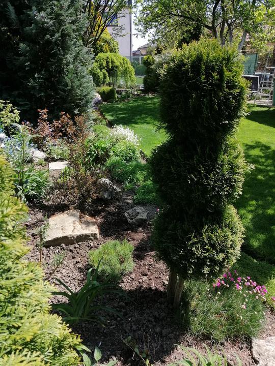 Záhrada 2021 - Obrázok č. 29